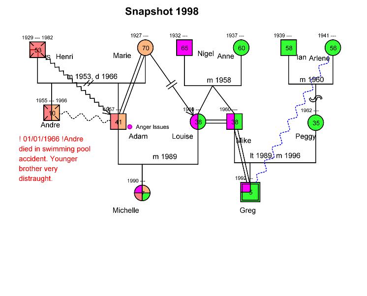 Genogram Timeline Snapshots Genogram Analytics